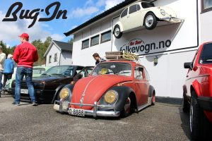 bug-in-20-golf-vw-t2